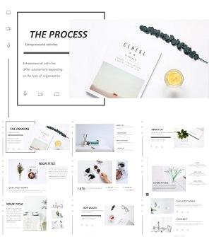 欧式时尚简约品牌宣传画册PPT模板下载