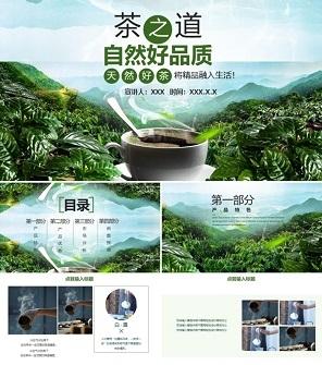 绿茶产品推广宣传策划PPT模板
